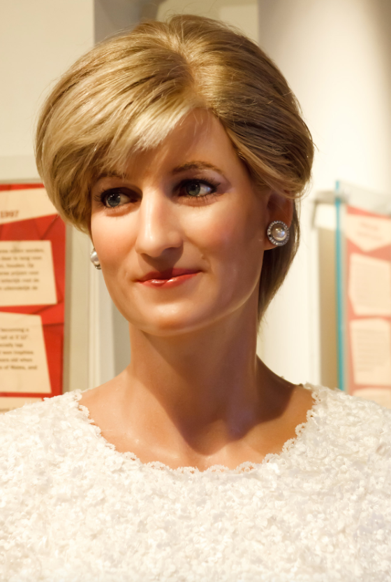 anthony beyer princess diana