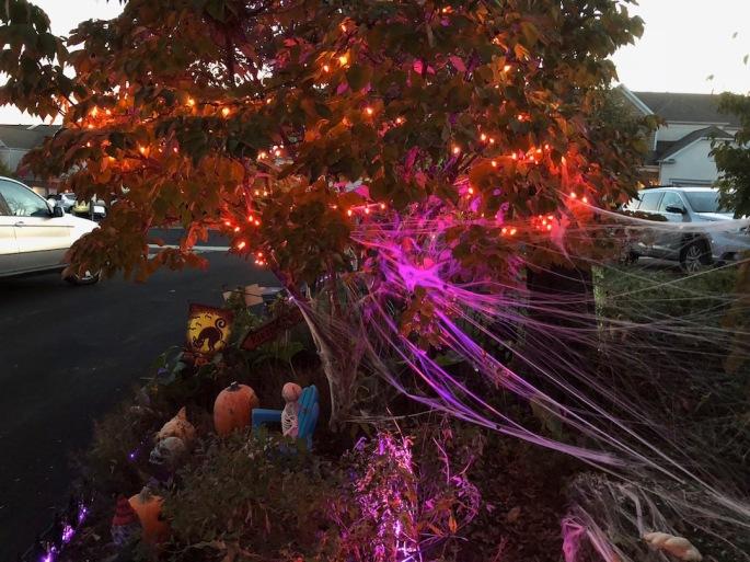 Anthony-Beyer-Halloween-4