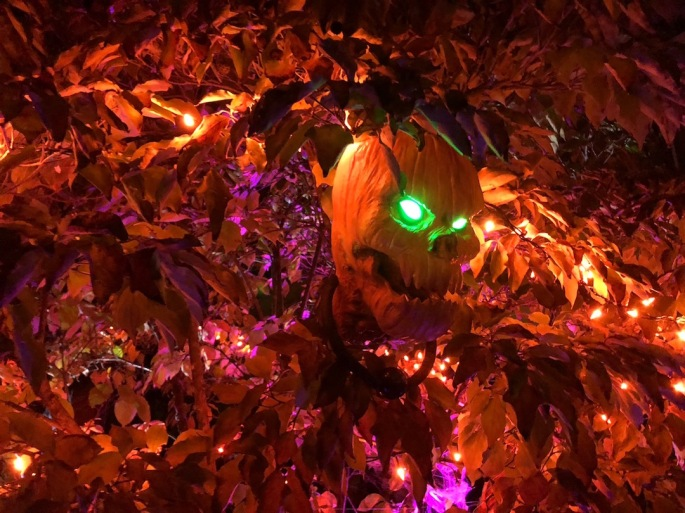 Anthony-Beyer-Halloween-8