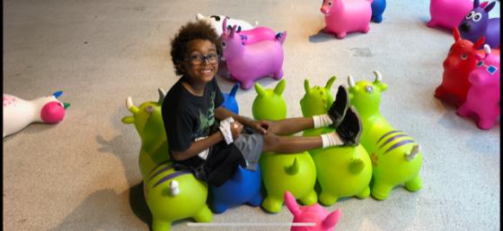 Anthony Beyer 5 Toys
